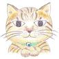 まったり読み笑い猫。